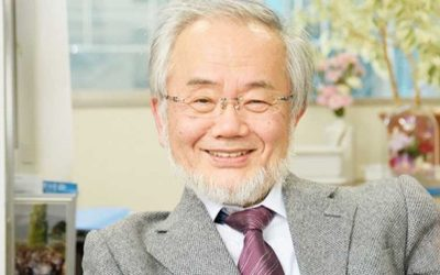 Japanese Scientist Wins Noble Prize for Showing how Body is Cleansed during Fasting
