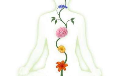 Assessing Your Own Chakras by Carolyn Thompson